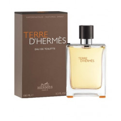Hermes Terre D'Hermes For Men Eau De Toilet 100ML (Parallel Import)